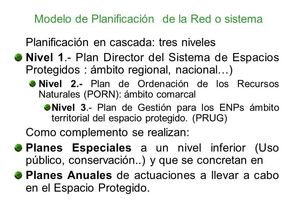 Modelo de Planificación de la Red o sistema