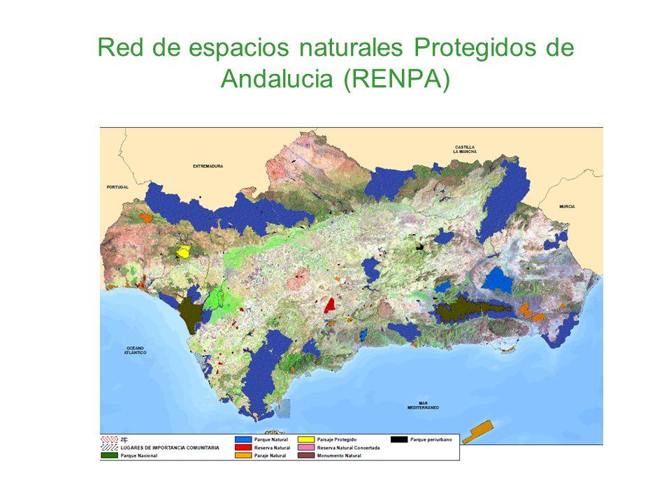 Red de espacios naturales Protegidos de Andalucia (RENPA)