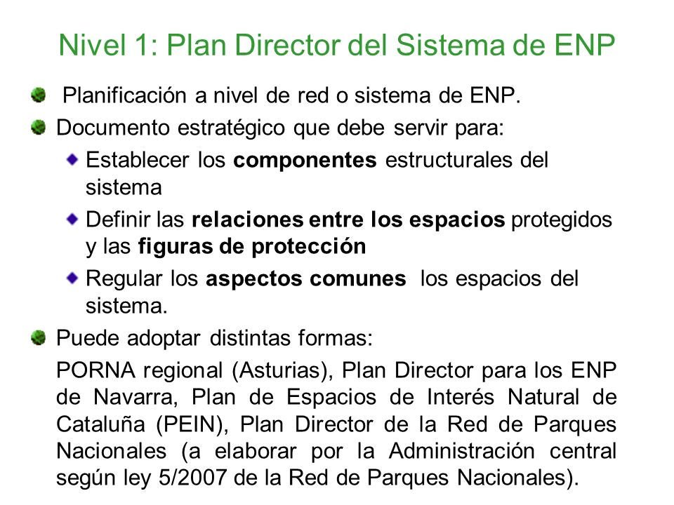 Nivel 1: Plan Director del Sistema de ENP
