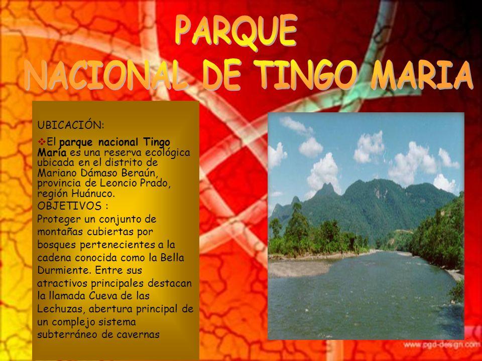 NACIONAL DE TINGO MARIA
