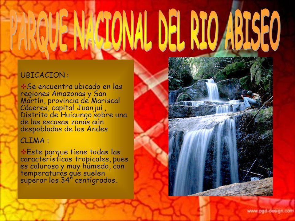PARQUE NACIONAL DEL RIO ABISEO