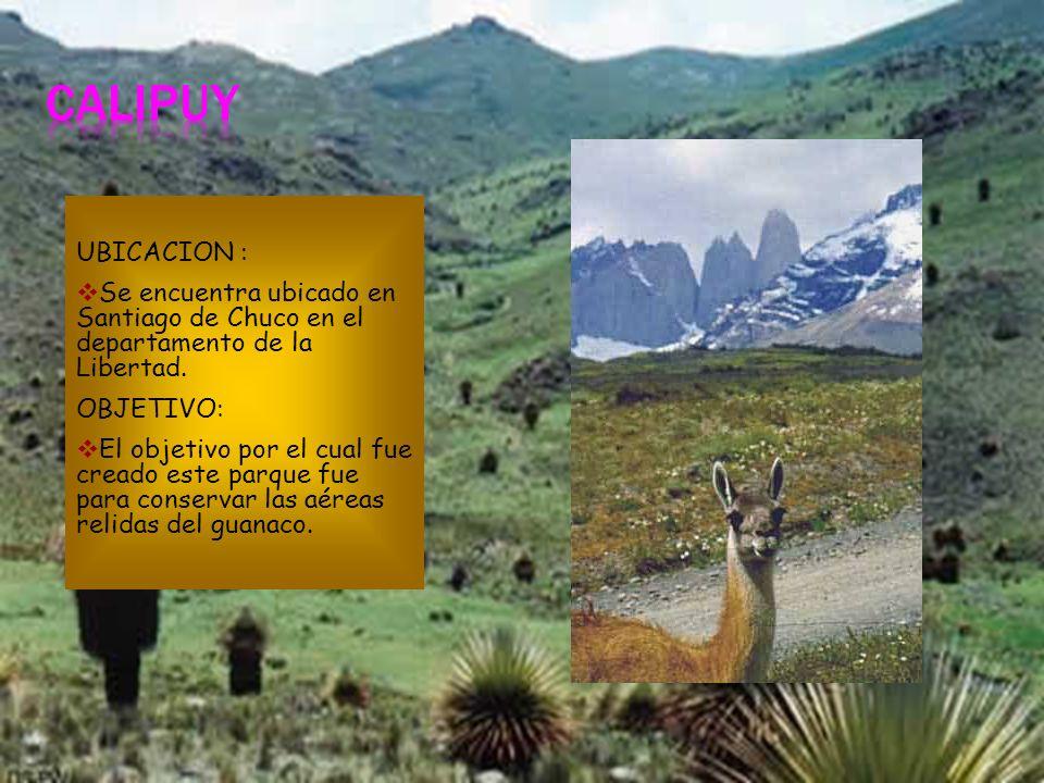 CALIPUY UBICACION : Se encuentra ubicado en Santiago de Chuco en el departamento de la Libertad. OBJETIVO: