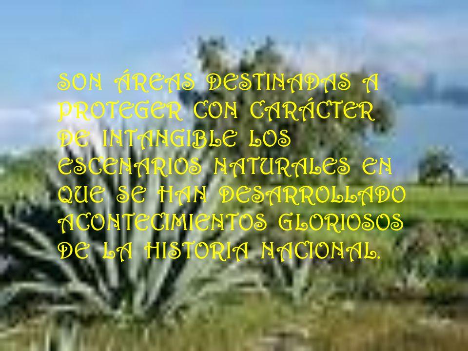 SON ÁREAS DESTINADAS A PROTEGER CON CARÁCTER DE INTANGIBLE LOS ESCENARIOS NATURALES EN QUE SE HAN DESARROLLADO ACONTECIMIENTOS GLORIOSOS DE LA HISTORIA NACIONAL.