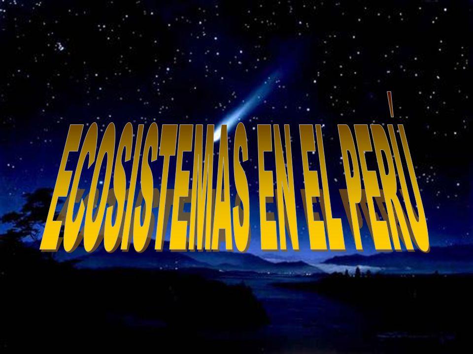 ECOSISTEMAS EN EL PERÚ