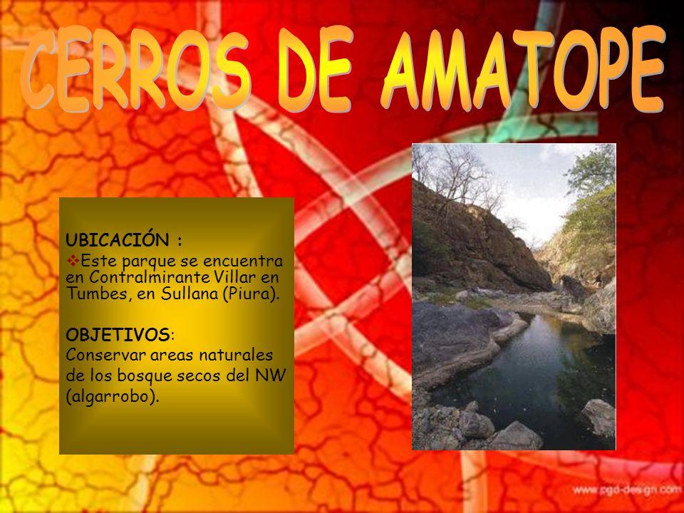 CERROS DE AMATOPE UBICACIÓN :