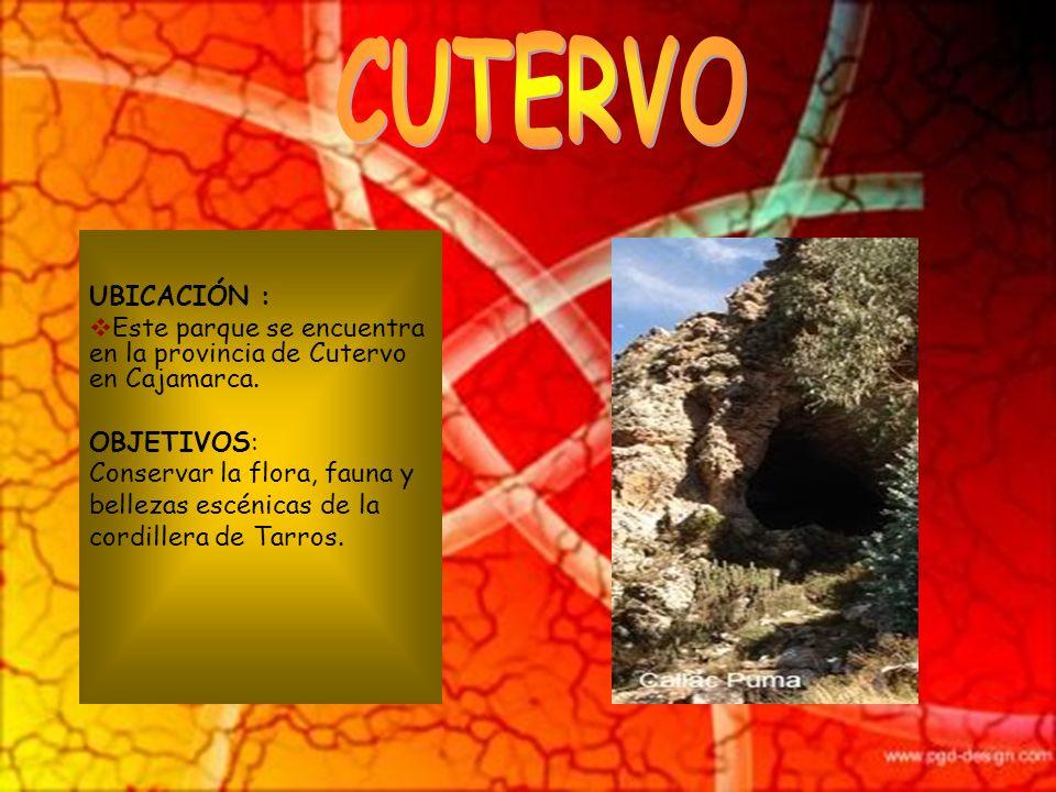 CUTERVO UBICACIÓN : Este parque se encuentra en la provincia de Cutervo en Cajamarca. OBJETIVOS: