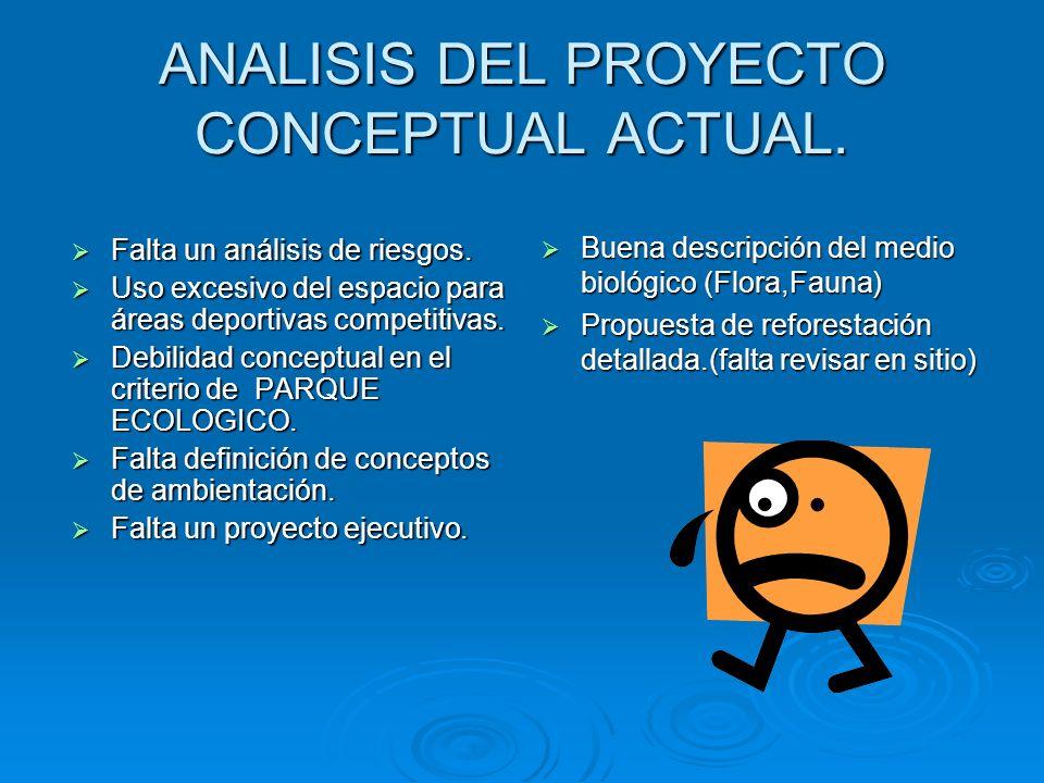 ANALISIS DEL PROYECTO CONCEPTUAL ACTUAL.