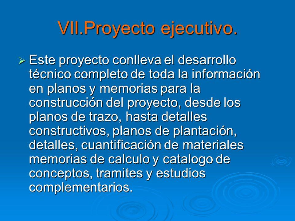 VII.Proyecto ejecutivo.