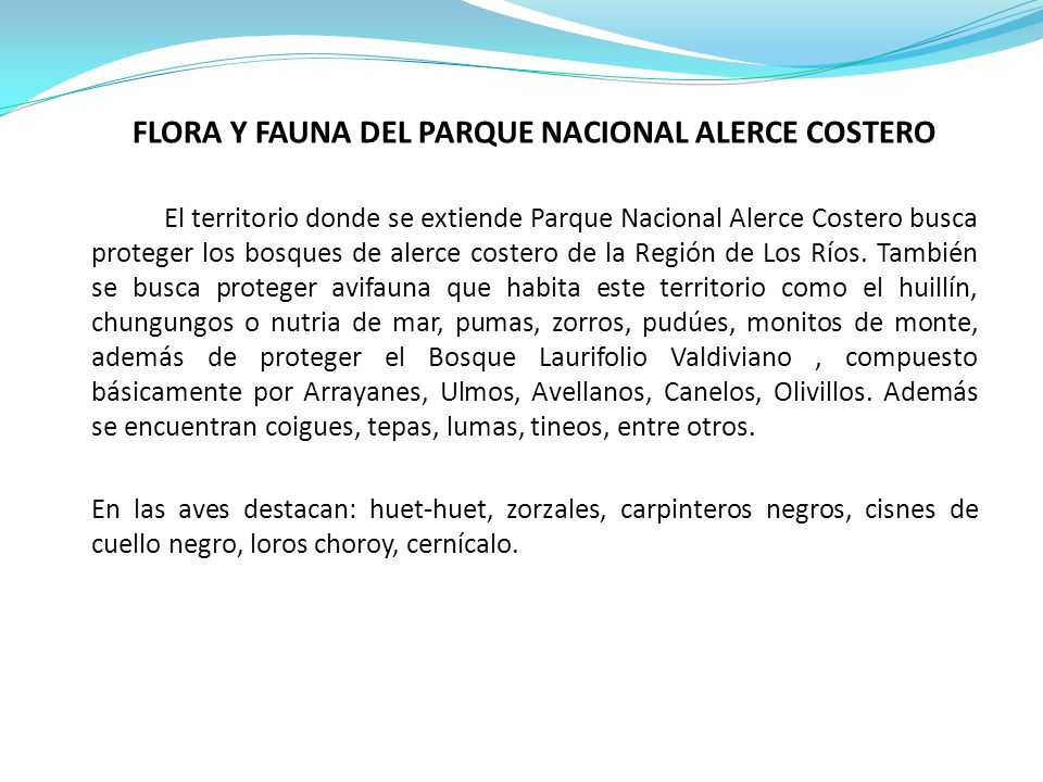 FLORA Y FAUNA DEL PARQUE NACIONAL ALERCE COSTERO