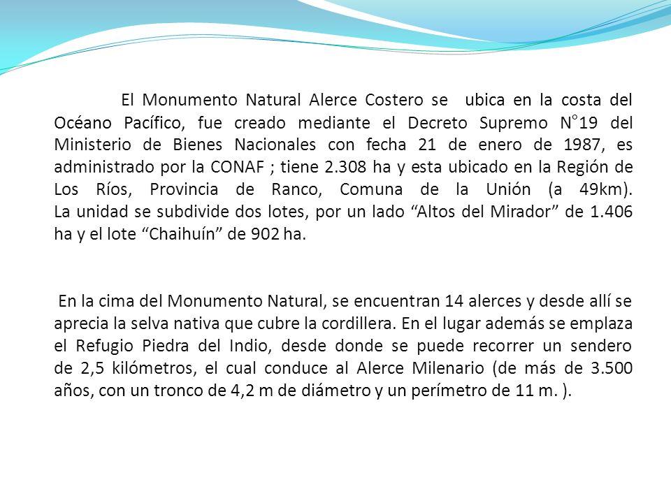 El Monumento Natural Alerce Costero se ubica en la costa del Océano Pacífico, fue creado mediante el Decreto Supremo N°19 del Ministerio de Bienes Nacionales con fecha 21 de enero de 1987, es administrado por la CONAF ; tiene 2.308 ha y esta ubicado en la Región de Los Ríos, Provincia de Ranco, Comuna de la Unión (a 49km). La unidad se subdivide dos lotes, por un lado Altos del Mirador de 1.406 ha y el lote Chaihuín de 902 ha.
