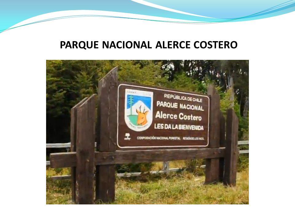 PARQUE NACIONAL ALERCE COSTERO