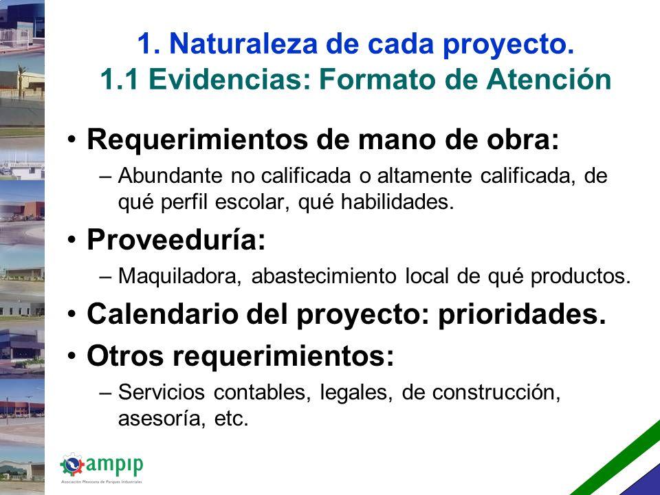 1. Naturaleza de cada proyecto. 1.1 Evidencias: Formato de Atención