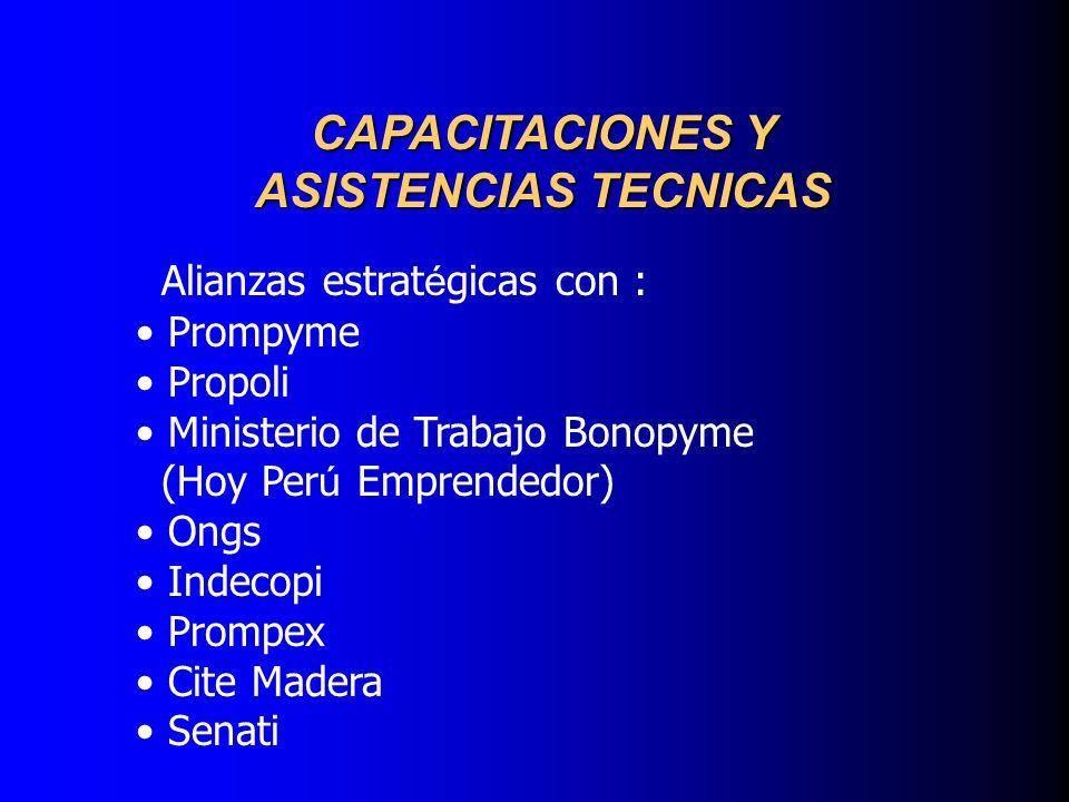 CAPACITACIONES Y ASISTENCIAS TECNICAS