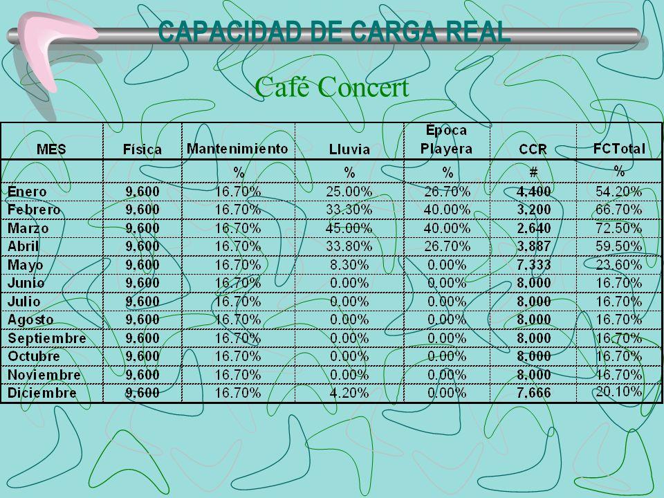 CAPACIDAD DE CARGA REAL