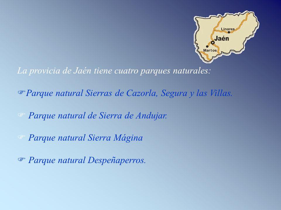 La provicia de Jaén tiene cuatro parques naturales: