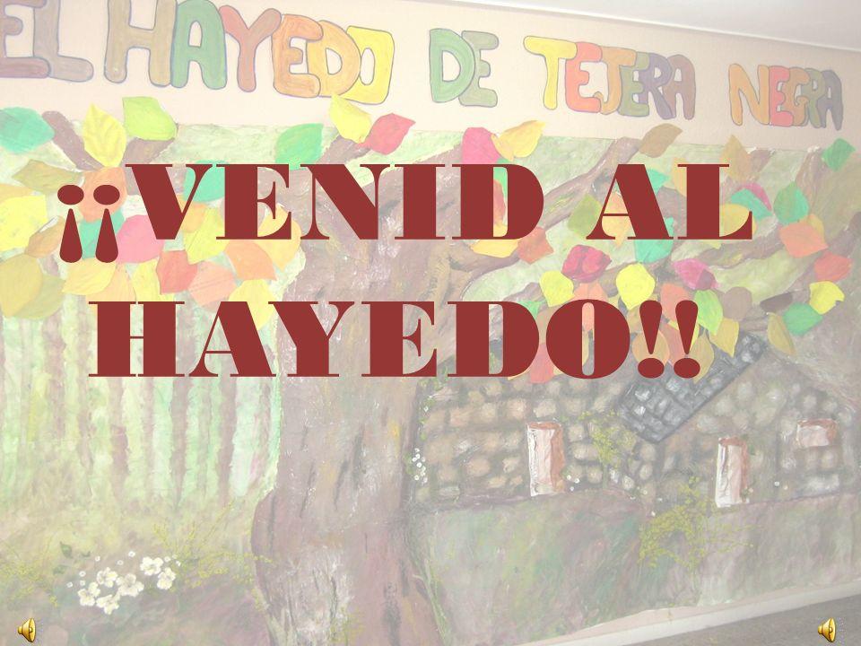 ¡¡VENID AL HAYEDO!!
