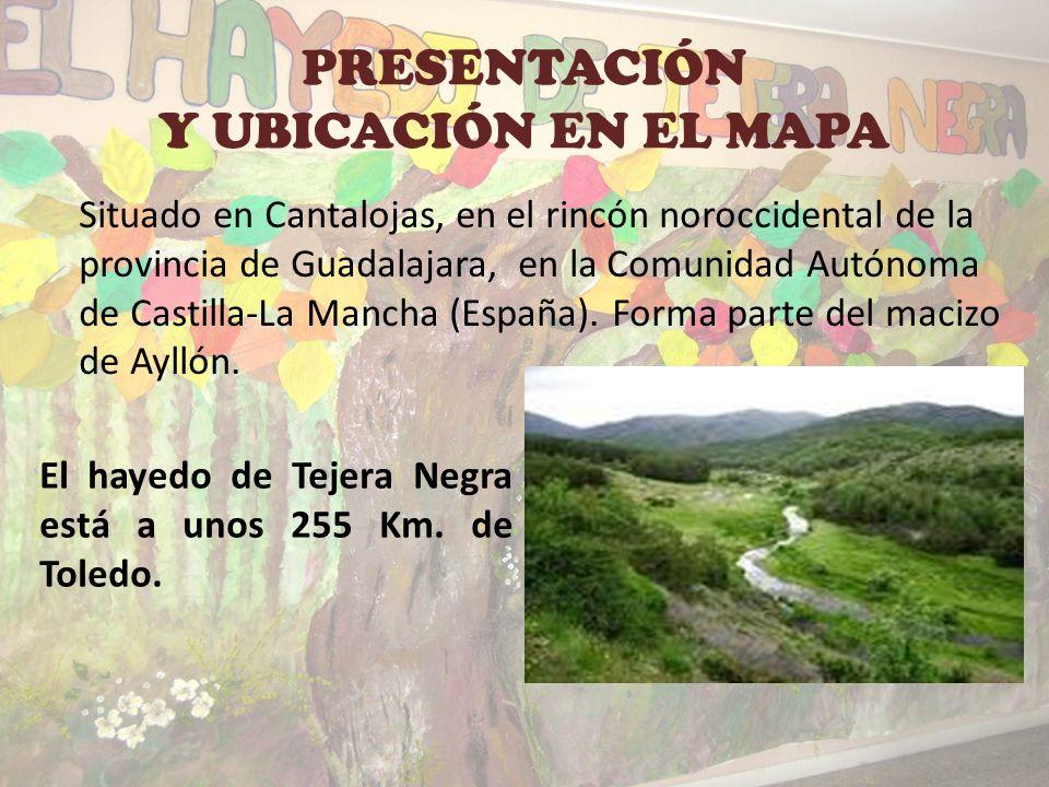 PRESENTACIÓN Y UBICACIÓN EN EL MAPA