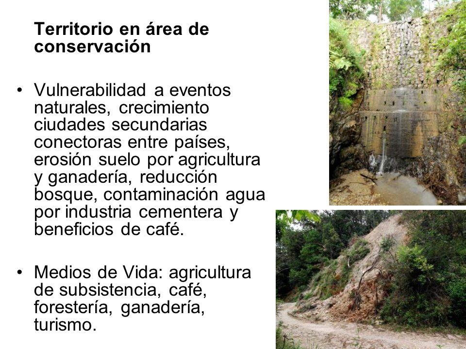 Territorio en área de conservación
