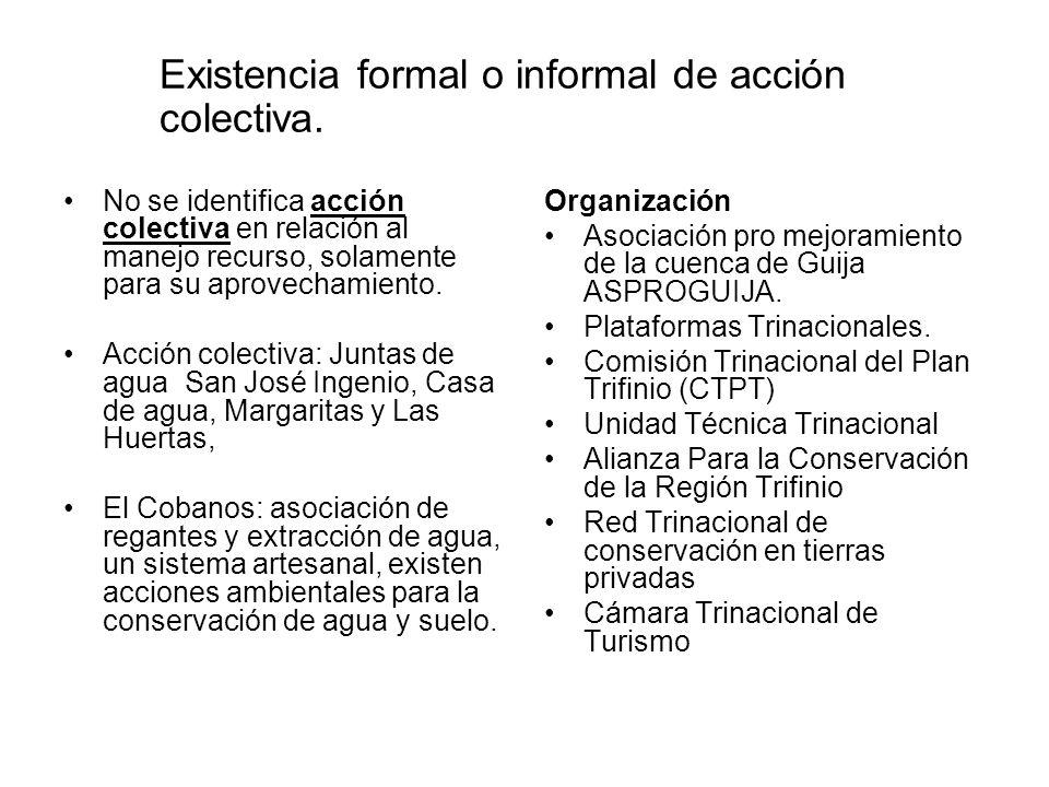 Existencia formal o informal de acción colectiva.
