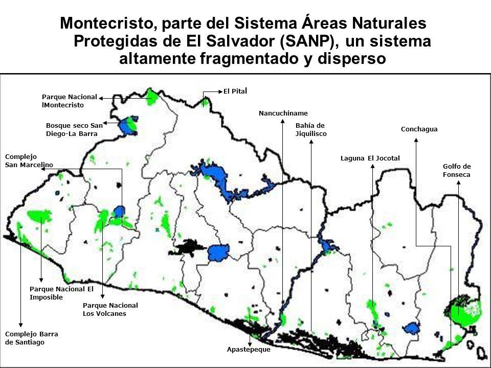 Montecristo, parte del Sistema Áreas Naturales Protegidas de El Salvador (SANP), un sistema altamente fragmentado y disperso