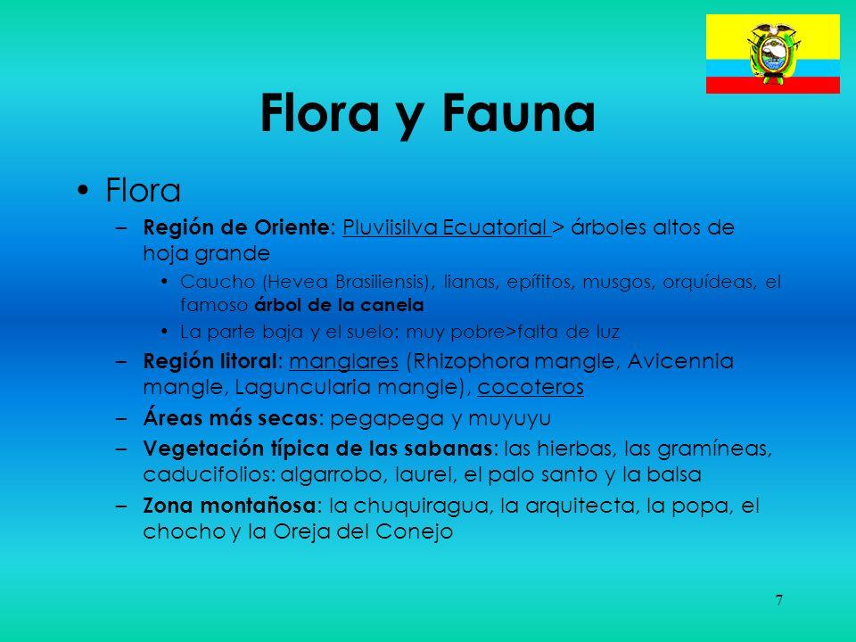 Flora y Fauna Flora. Región de Oriente: Pluviisilva Ecuatorial > árboles altos de hoja grande.