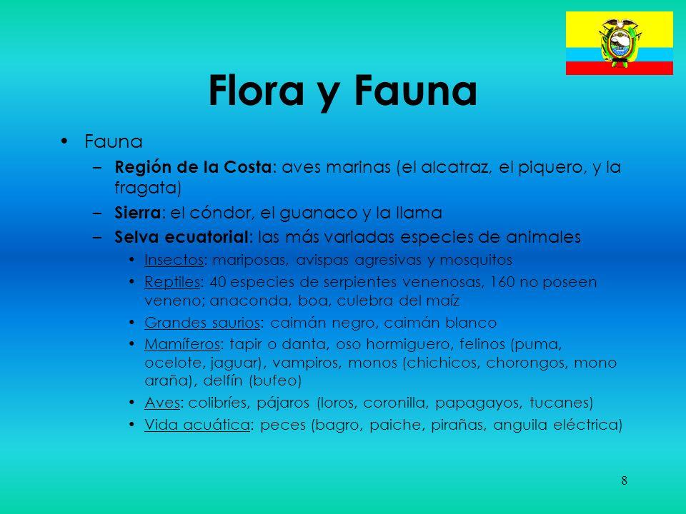 Flora y Fauna Fauna. Región de la Costa: aves marinas (el alcatraz, el piquero, y la fragata) Sierra: el cóndor, el guanaco y la llama.