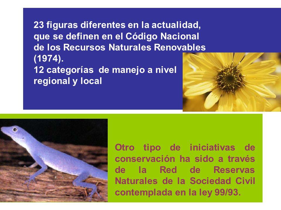 23 figuras diferentes en la actualidad, que se definen en el Código Nacional de los Recursos Naturales Renovables (1974).