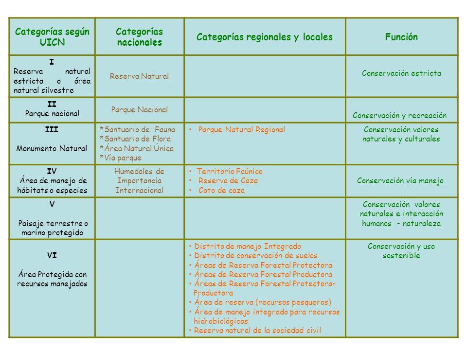 Categorías nacionales Categorías regionales y locales
