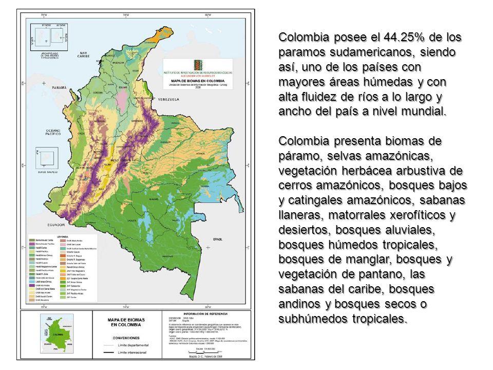 Colombia posee el 44.25% de los paramos sudamericanos, siendo así, uno de los países con mayores áreas húmedas y con alta fluidez de ríos a lo largo y ancho del país a nivel mundial.