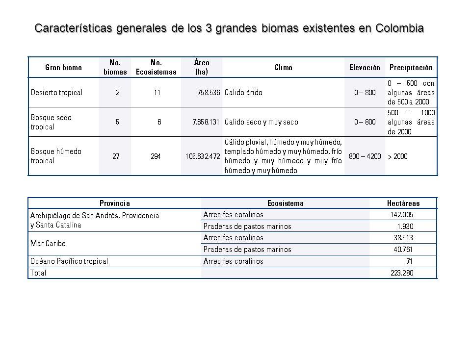 Características generales de los 3 grandes biomas existentes en Colombia