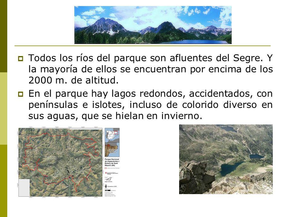 Todos los ríos del parque son afluentes del Segre