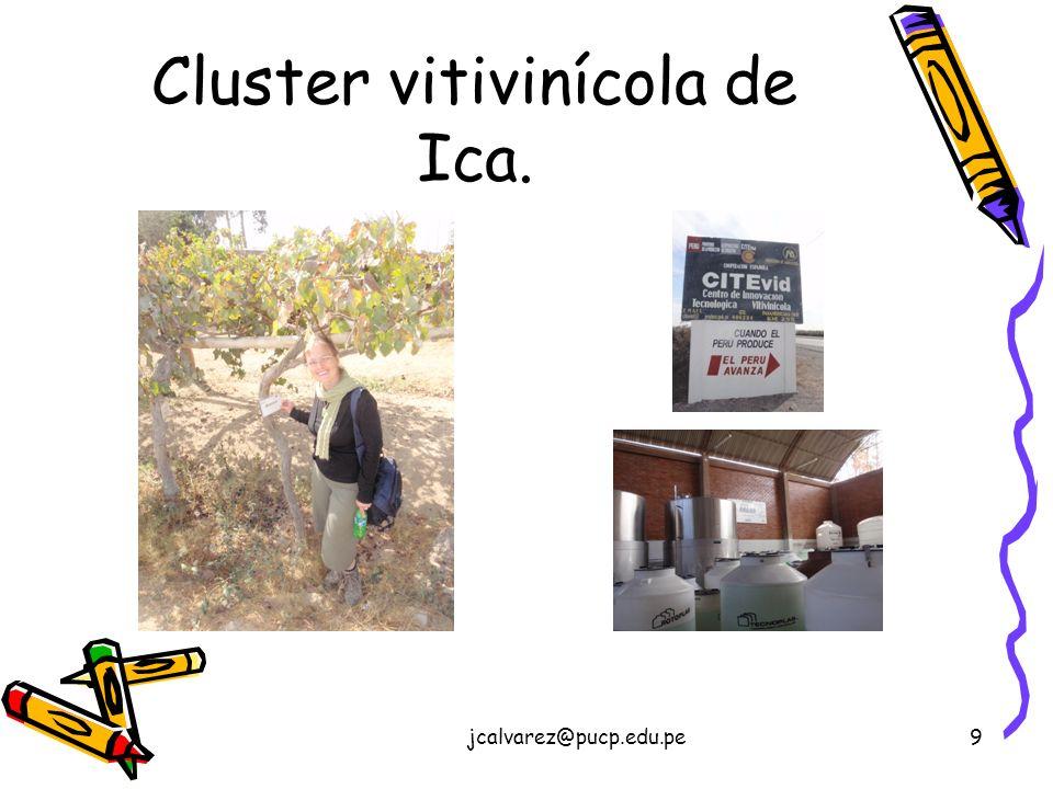 Cluster vitivinícola de Ica.