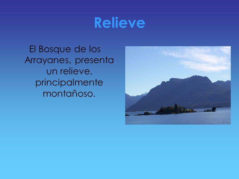 Relieve El Bosque de los Arrayanes, presenta un relieve, principalmente montañoso.