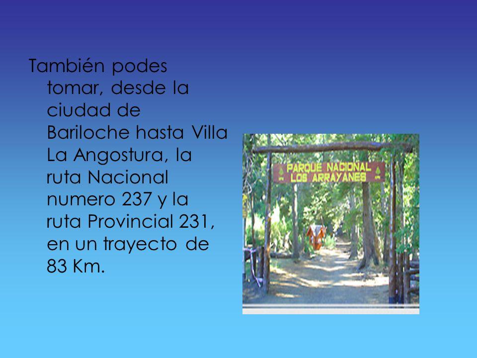 También podes tomar, desde la ciudad de Bariloche hasta Villa La Angostura, la ruta Nacional numero 237 y la ruta Provincial 231, en un trayecto de 83 Km.