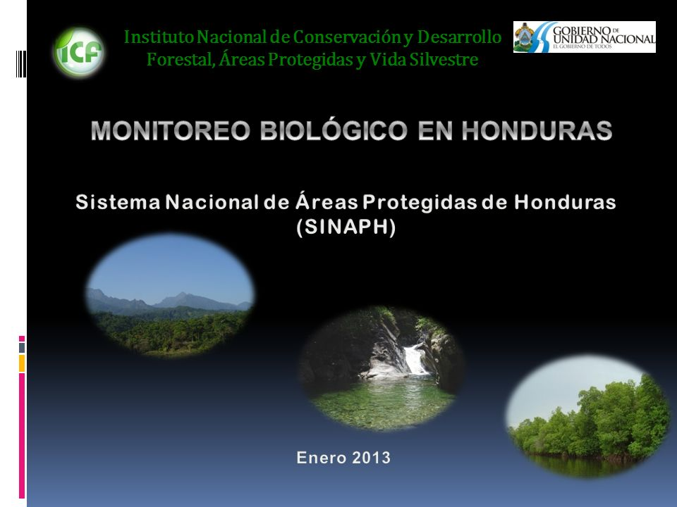 MONITOREO BIOLÓGICO EN HONDURAS