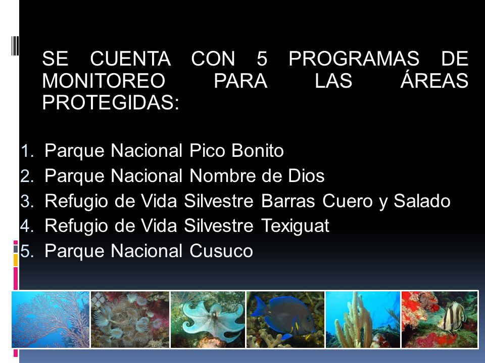 SE CUENTA CON 5 PROGRAMAS DE MONITOREO PARA LAS ÁREAS PROTEGIDAS: