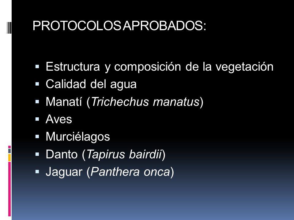 PROTOCOLOS APROBADOS: