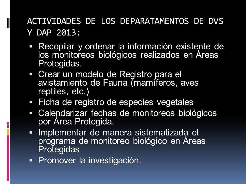 ACTIVIDADES DE LOS DEPARATAMENTOS DE DVS Y DAP 2013: