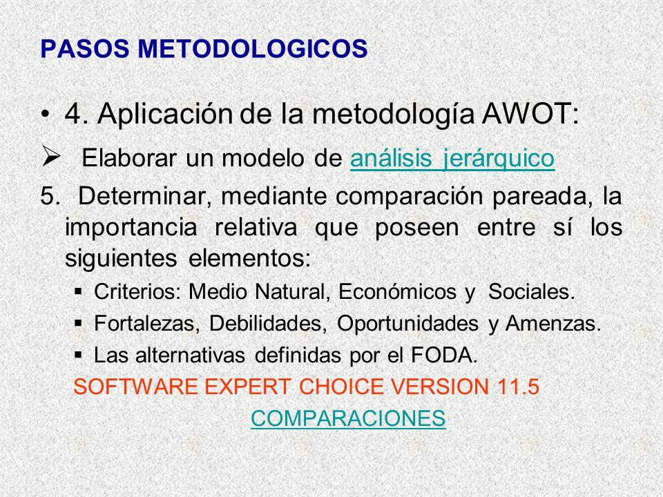 4. Aplicación de la metodología AWOT: