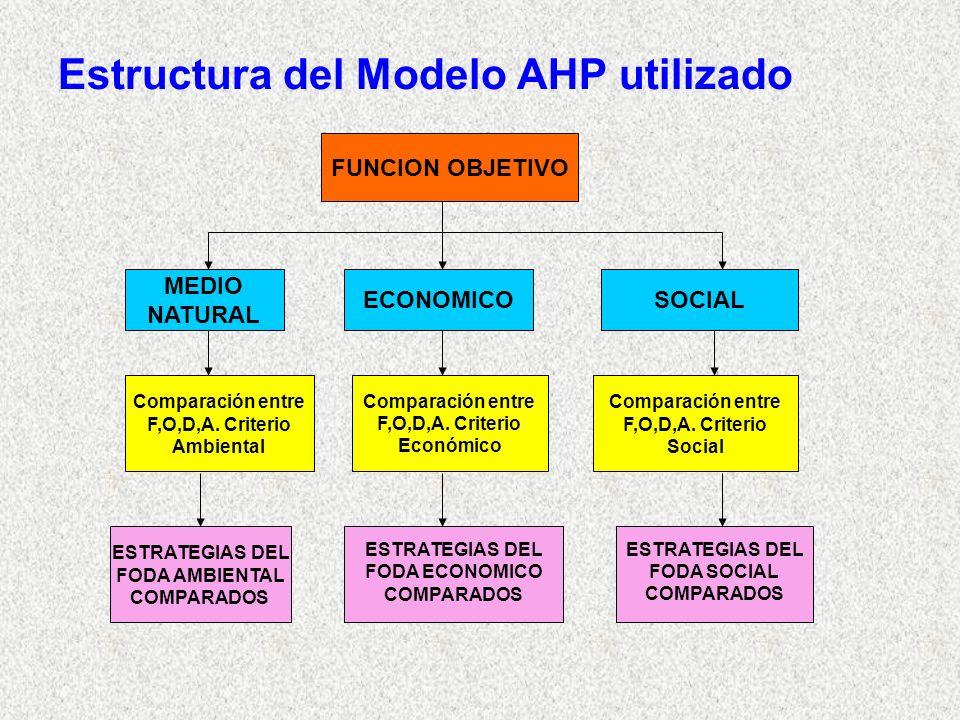 Estructura del Modelo AHP utilizado