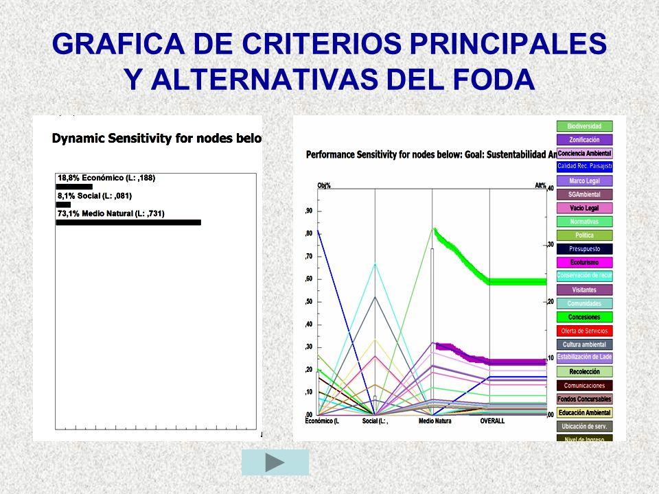 GRAFICA DE CRITERIOS PRINCIPALES Y ALTERNATIVAS DEL FODA