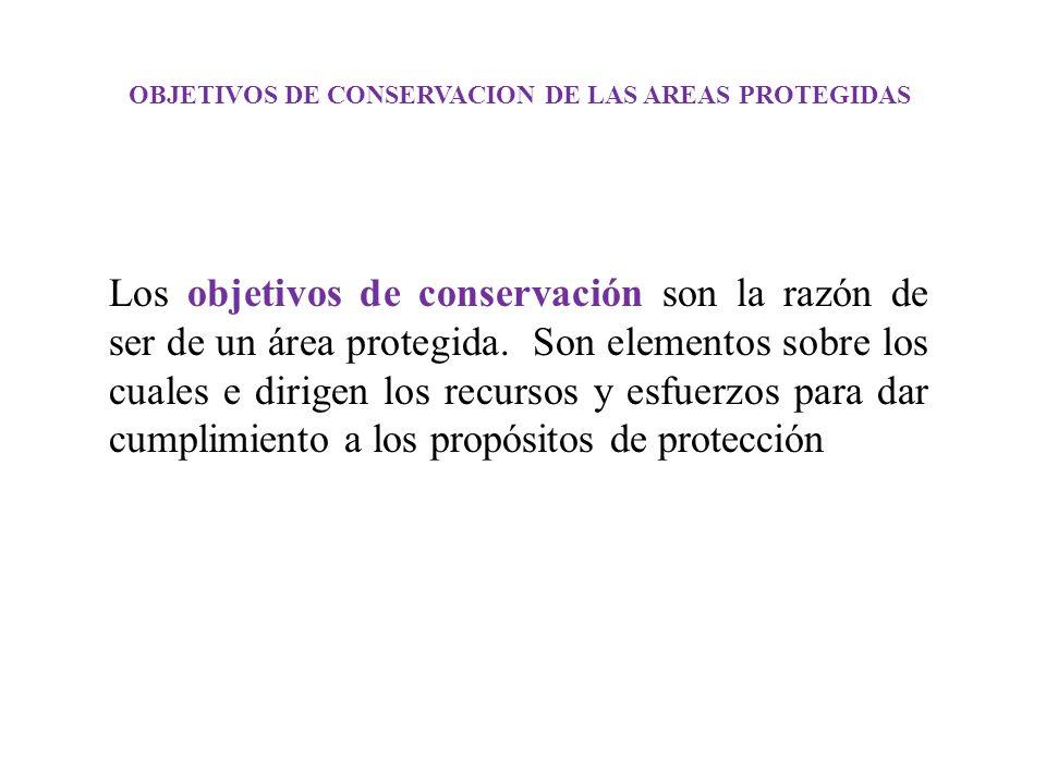 OBJETIVOS DE CONSERVACION DE LAS AREAS PROTEGIDAS