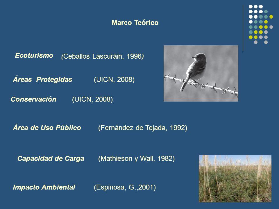 Marco Teórico Ecoturismo. (Ceballos Lascuráin, 1996) Áreas Protegidas. (UICN, 2008) Conservación.