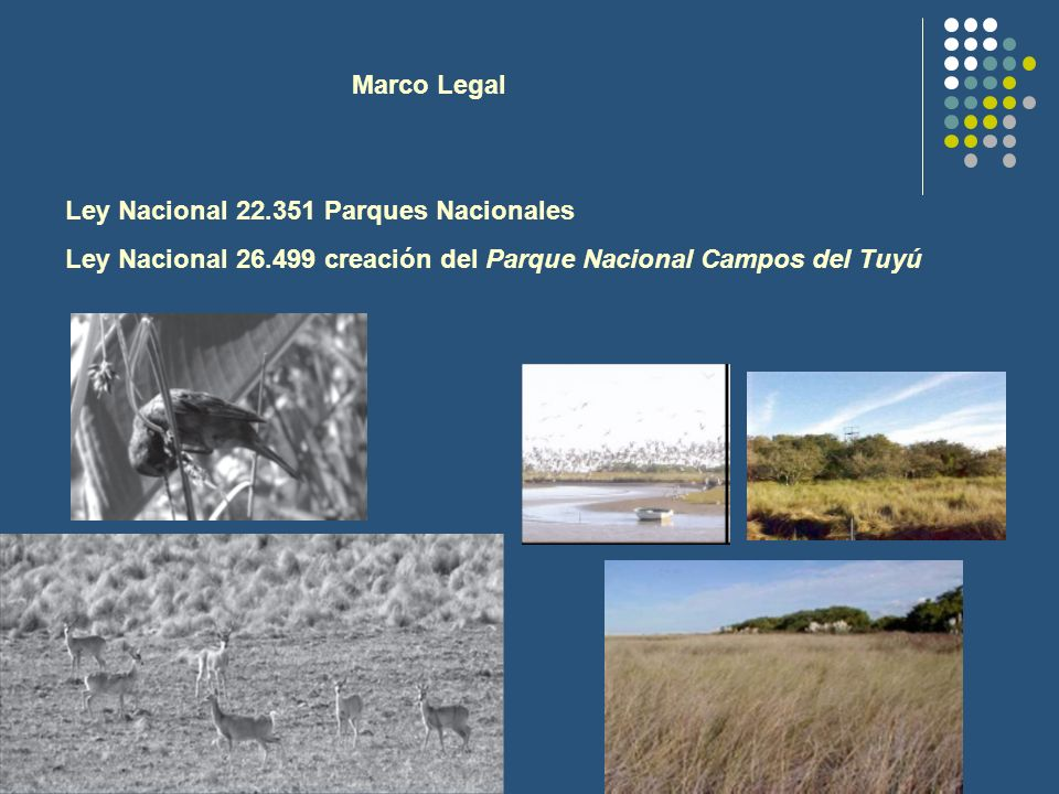 Marco Legal Ley Nacional 22.351 Parques Nacionales.