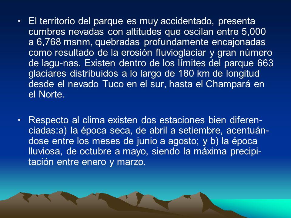 El territorio del parque es muy accidentado, presenta cumbres nevadas con altitudes que oscilan entre 5,000 a 6,768 msnm, quebradas profundamente encajonadas como resultado de la erosión fluvioglaciar y gran número de lagu-nas. Existen dentro de los límites del parque 663 glaciares distribuidos a lo largo de 180 km de longitud desde el nevado Tuco en el sur, hasta el Champará en el Norte.