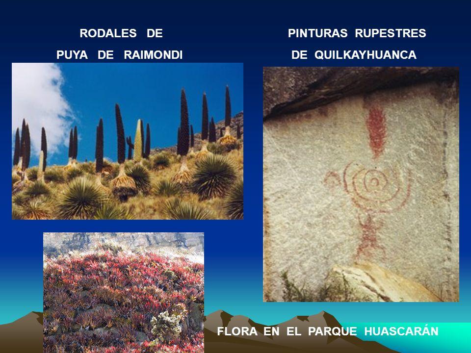 RODALES DE PUYA DE RAIMONDI. PINTURAS RUPESTRES.