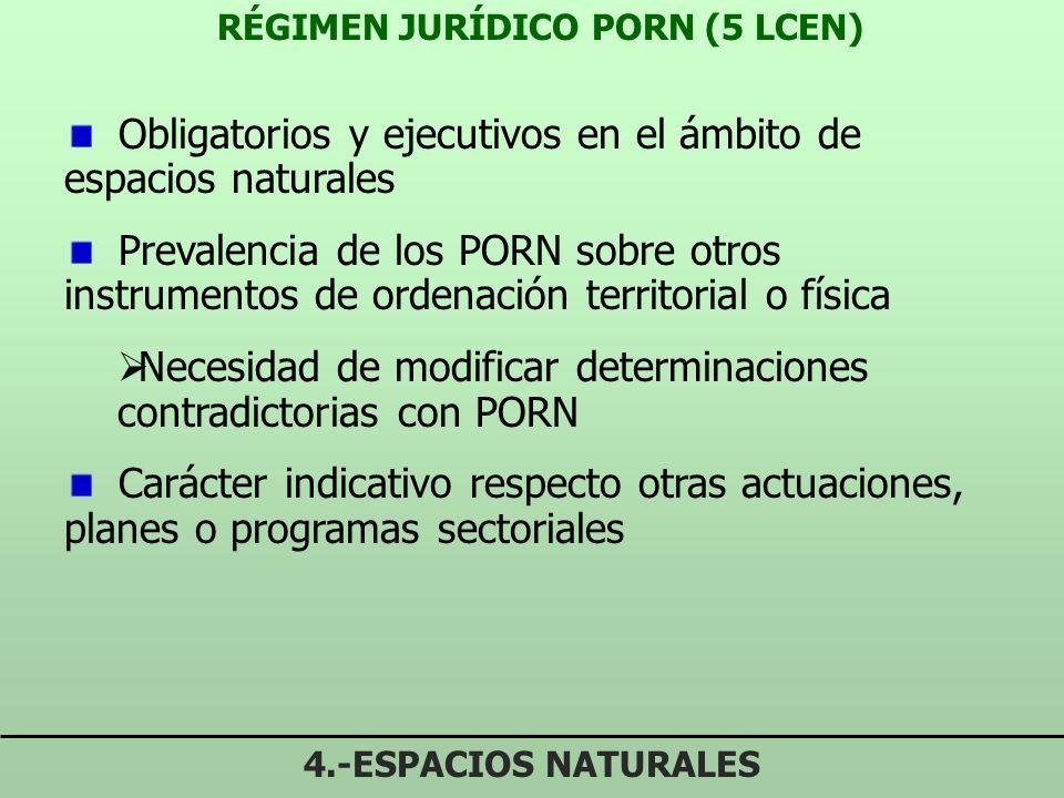 RÉGIMEN JURÍDICO PORN (5 LCEN)