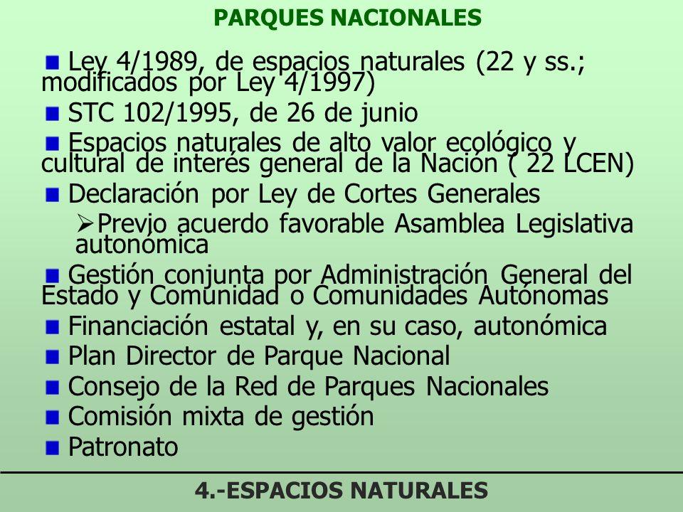 Declaración por Ley de Cortes Generales
