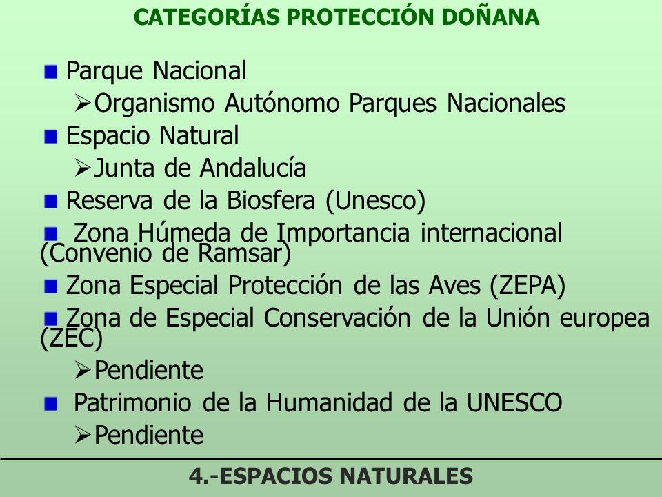 CATEGORÍAS PROTECCIÓN DOÑANA