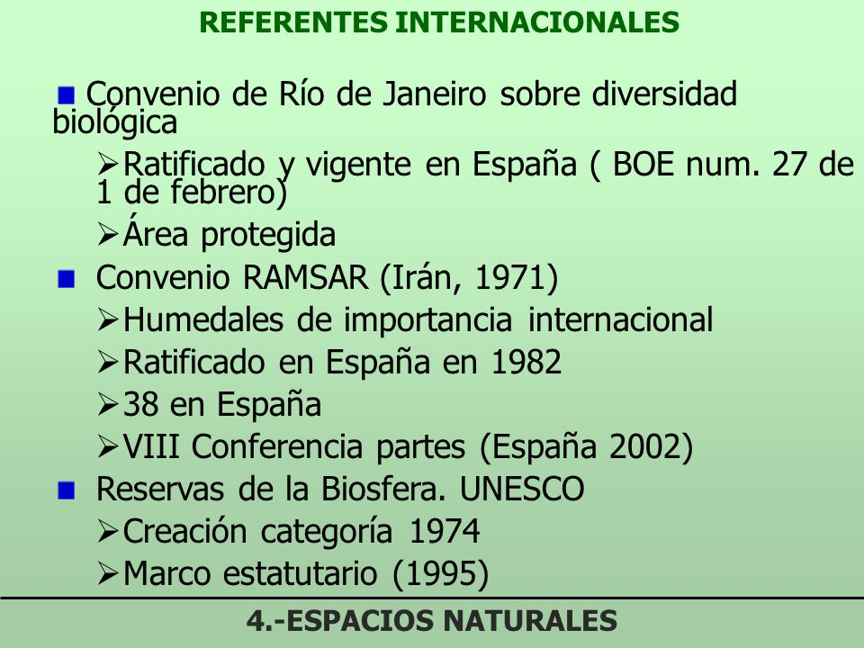 REFERENTES INTERNACIONALES